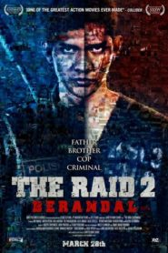 The Raid 2:Berandal (2014)